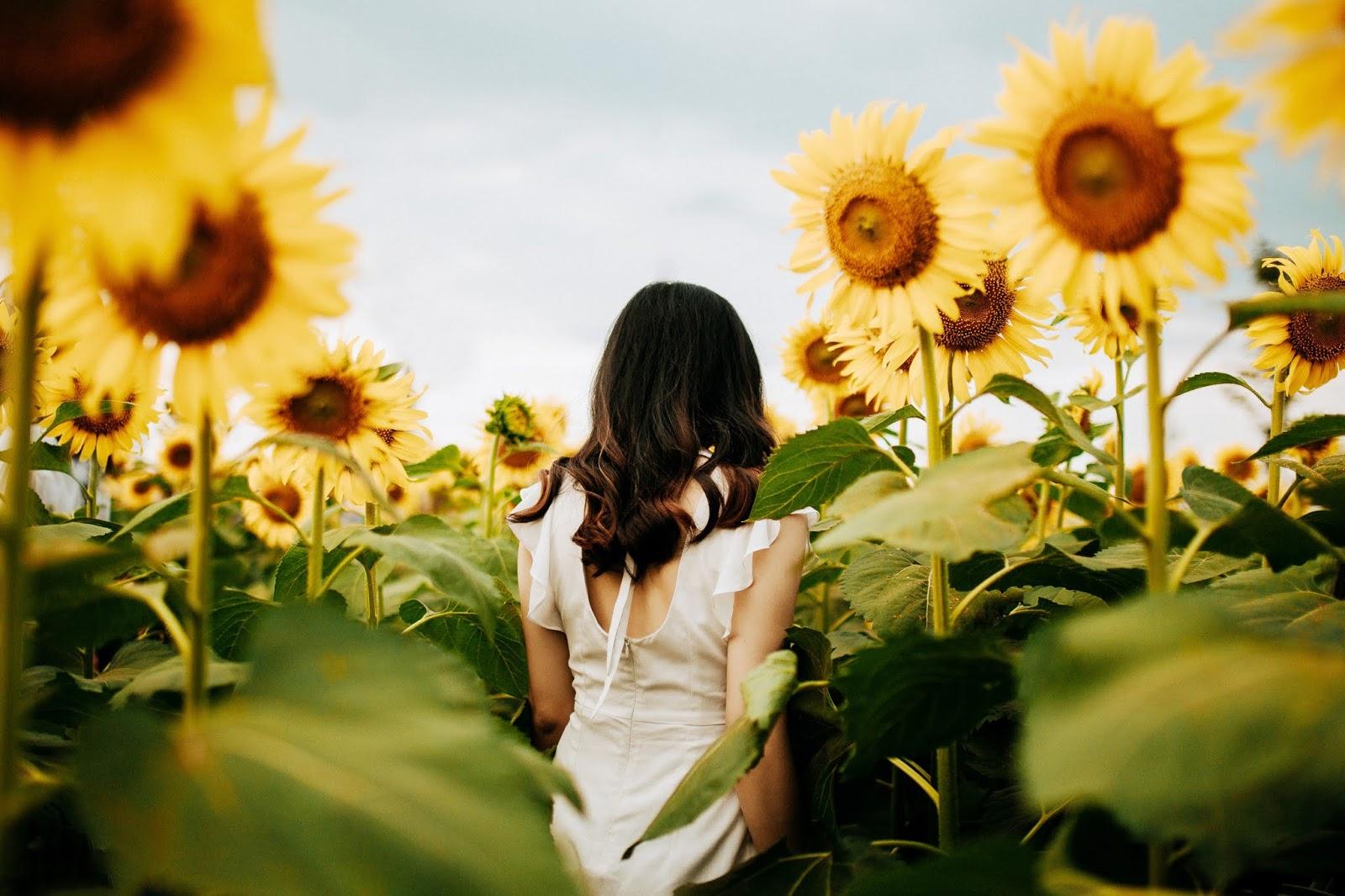 Cytaty o miłości na zaproszenia ślubne i nie tylko