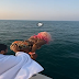 Femi Otedola Shocked As Daughter, DJ Cuppy Makes Dive into the Ocean (VIDEO)