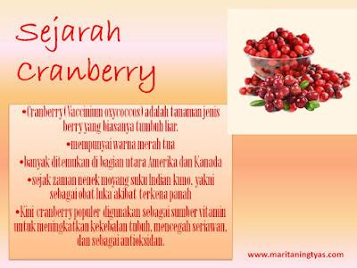 Sejarah Cranberry Solusi Alami Anyang-anyangan