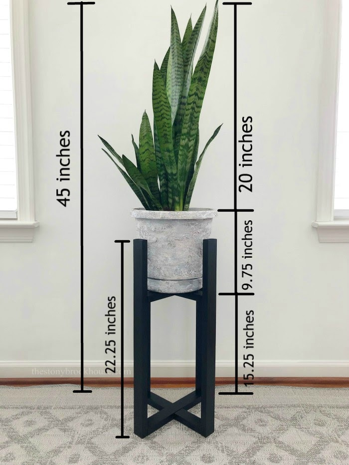 Plant Stand Measurements