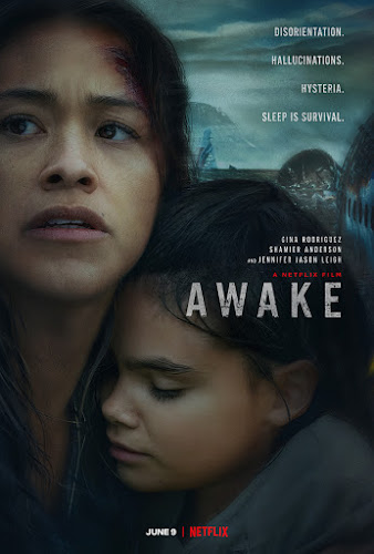 Awake (Web-DL 1080p Dual Latino / Ingles) (2021)