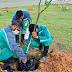 Prefeitura realiza 1° Encontro Arborizando Manaus nesta quarta-feira, 14/7