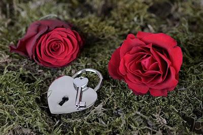 rose day shayari in hindi for boyfriend