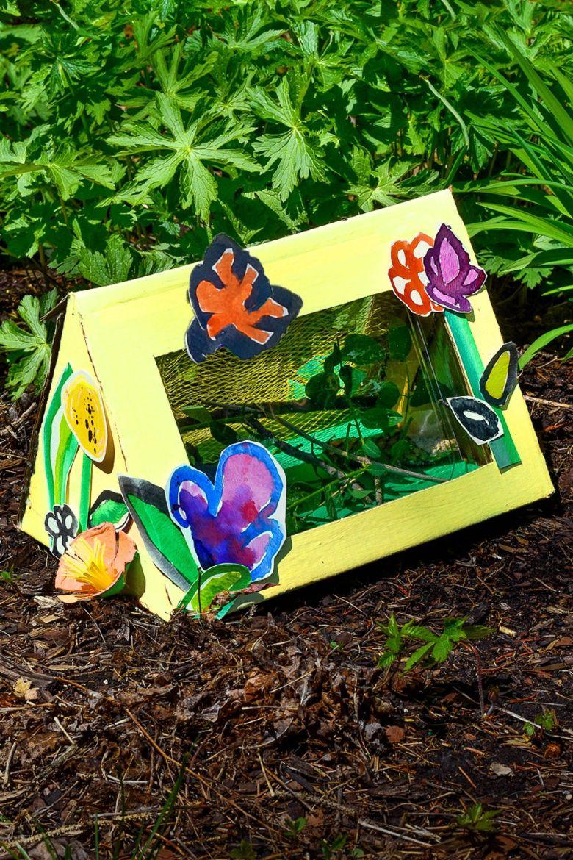 bug box craft  - summer camp craft for kids