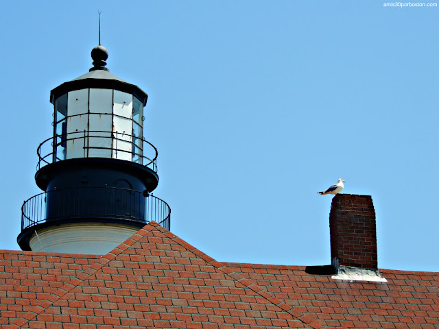 Lente del Faro Portland Head Light en Maine