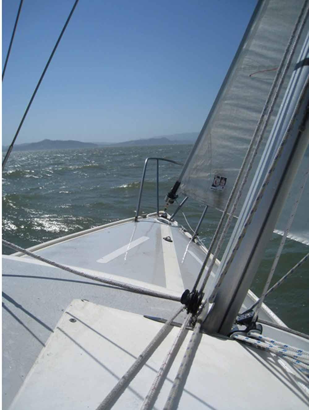 Pink ROSES trimming SAILBOAT Sails Vines Ocean Waves Seagulls Antique ART PRINT