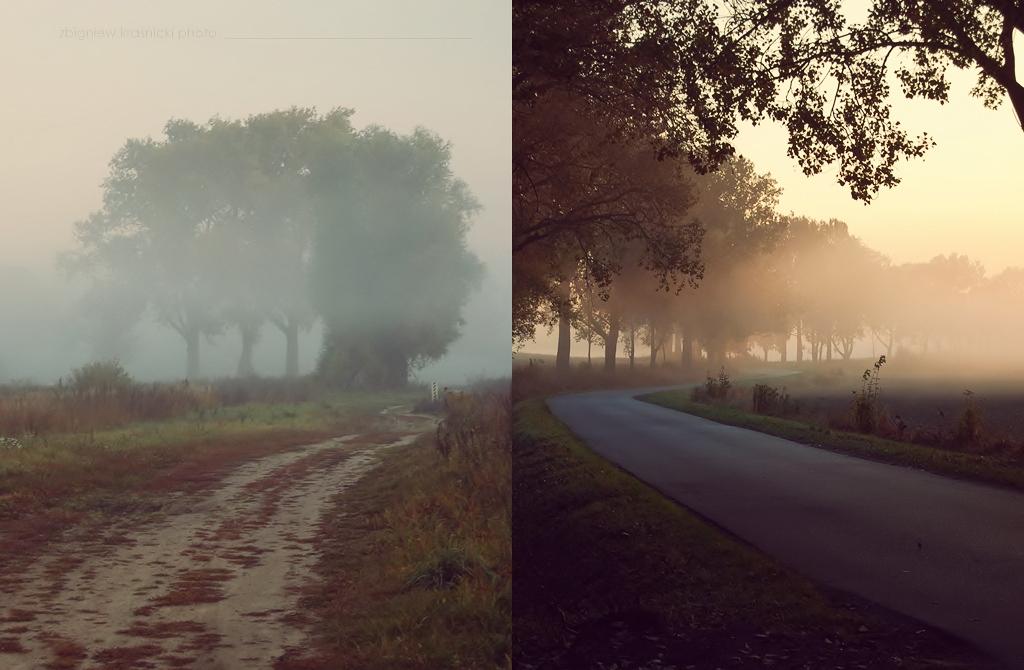 Tomaszkowo, zamglone drogi