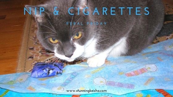 Feral Friday: Nip and Cigarettes