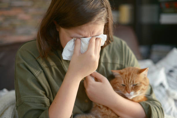 Cat Allergies – How to Deal with Them
