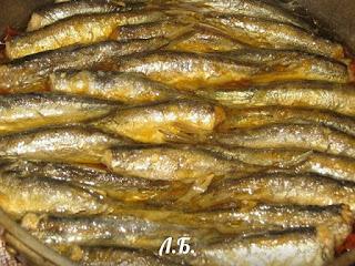делаем домашние шпроты из мелкой рыбы