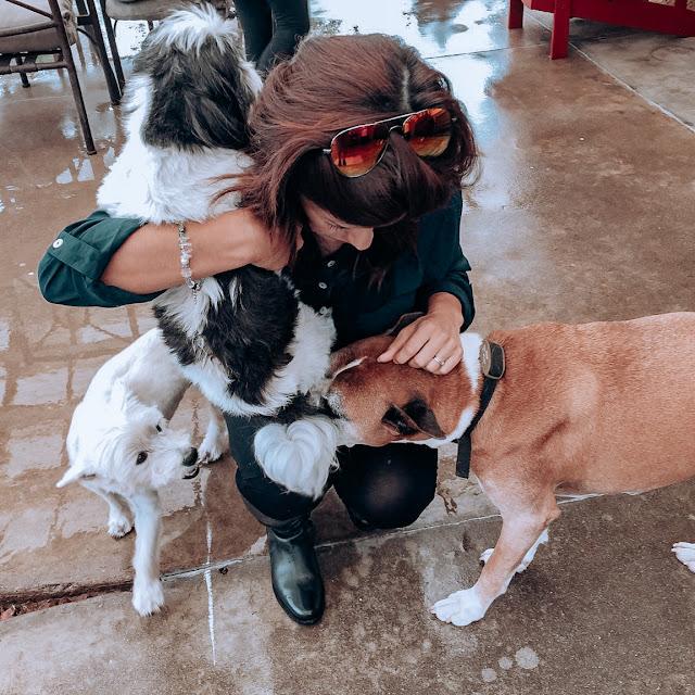 Pet Owner
