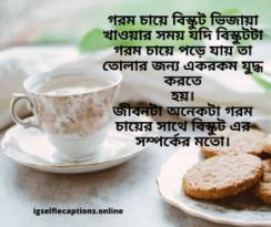 Bengali Status  বাংলা স্ট্যাটাস