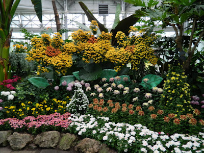 Central chrysanthemum display at 2016 Allan Gardens Conservatory  Fall Chrysanthemum Show by garden muses-not another Toronto gardening blog