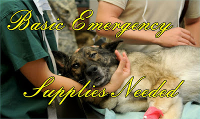 What are Basic Emergency Supplies Needed in a Shelter