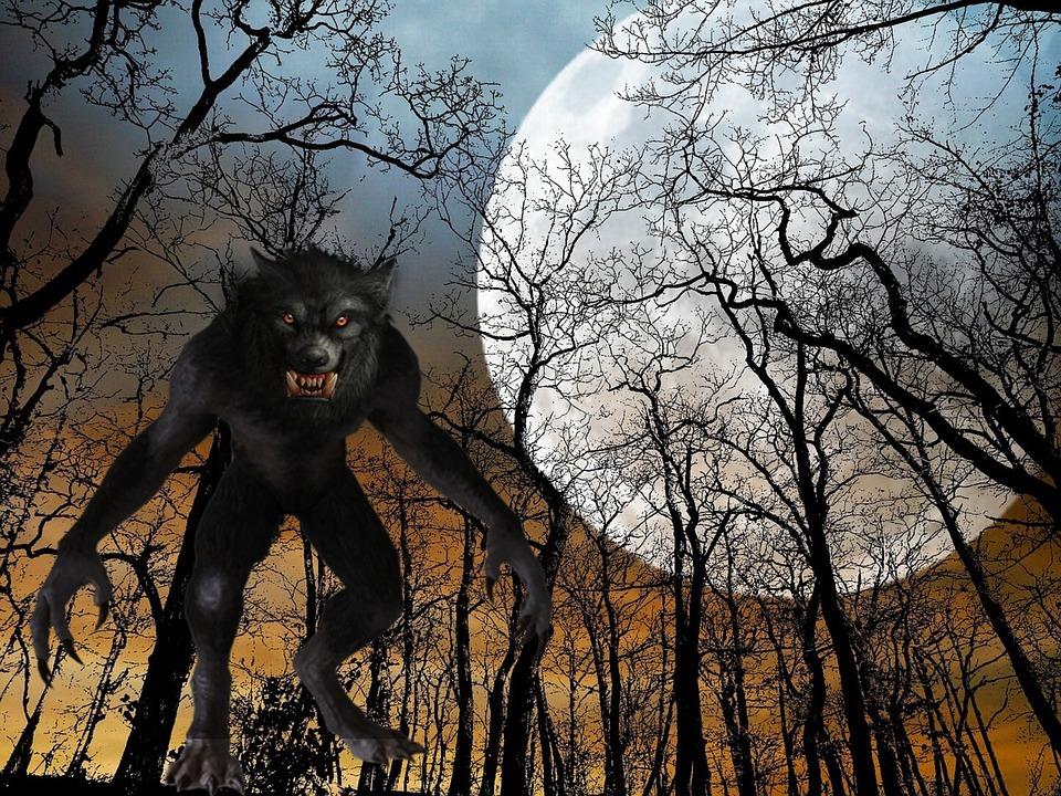 Amazing Facts about Wolf in Hindi - भेडियों से जुड़े रोचक तथ्य और जानकारी