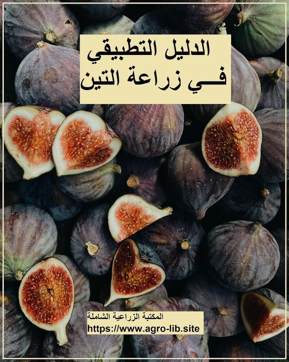 كتاب : الدليل التطبيقي في زراعة التين