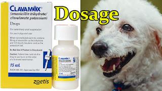liquid-clavamox-antibiotic-oral-suspension-dosage-for-puppies-dogs