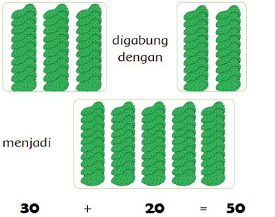 Banyaknya buah sirsak sebanyak 50 buah www.jokowidodo-marufamin.com