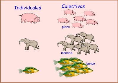 Resultado de imagen de comun propio individual y colectivo