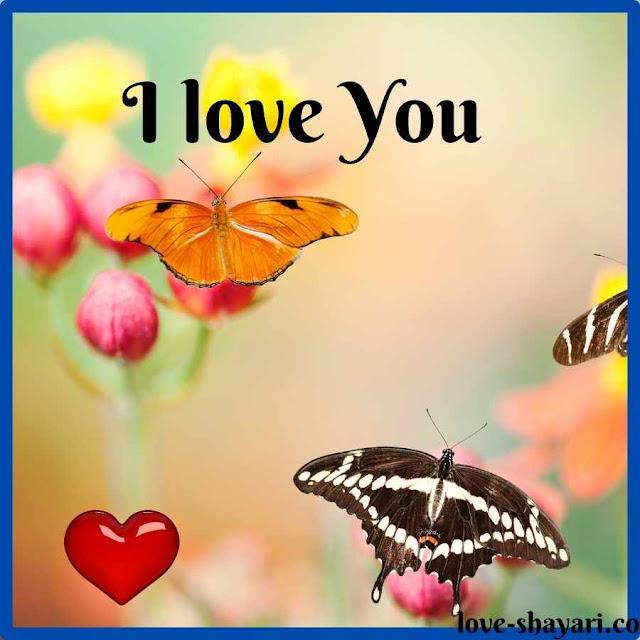 i love you pics romantic