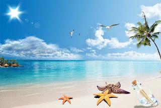Biển Hải Thanh điểm du lịch thu hút khách Xứ Thanh