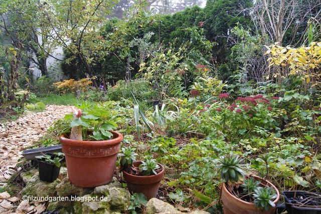 Blick ins Terrassenbeet von Filz und Garten