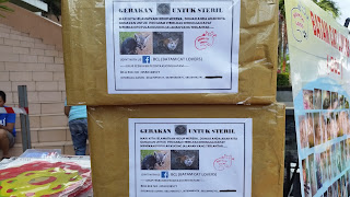 Batam cat lovers