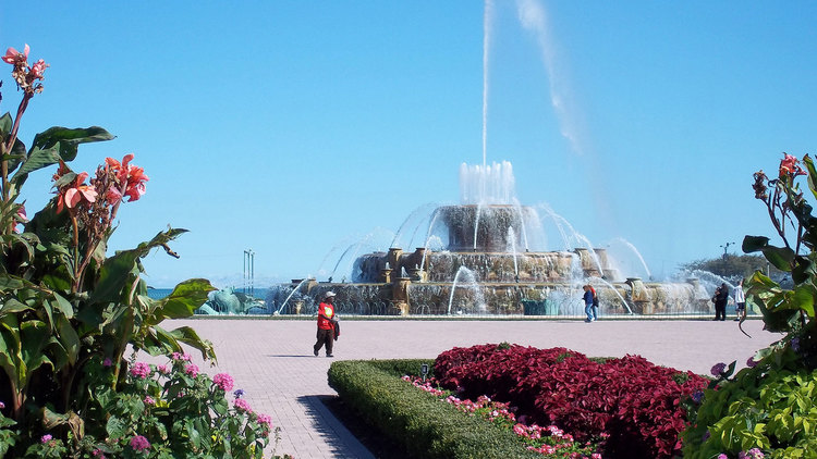 Top 10 Fun things to do in Chicago Illinois
