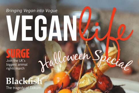 October's issue of Vegan Life Magazine reviewed.  secondhandsusie.blogspot.com #vegan #veganlifemagazine #veganblog