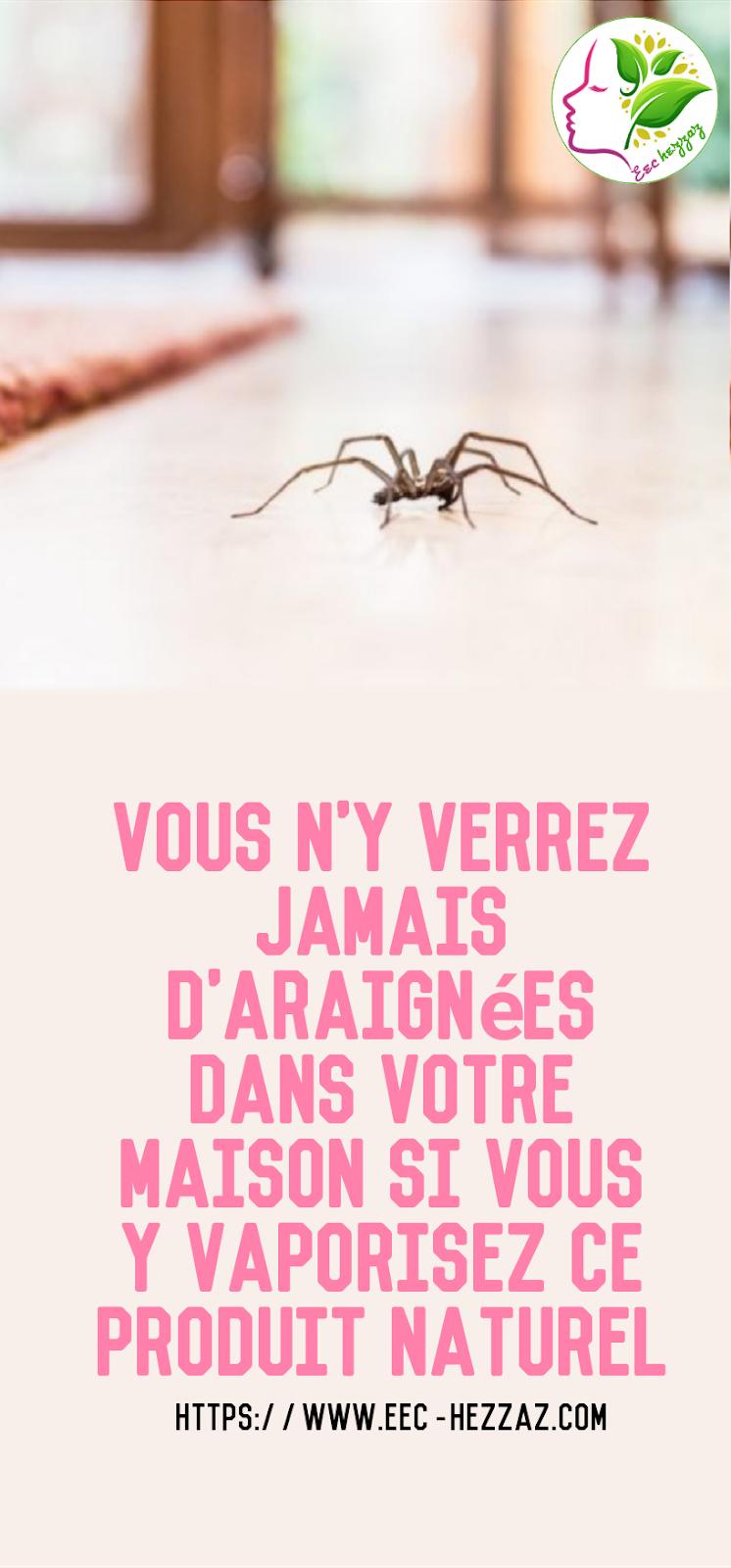 Vous n'y verrez JAMAIS d'araignées dans votre maison si vous y vaporisez ce produit naturel