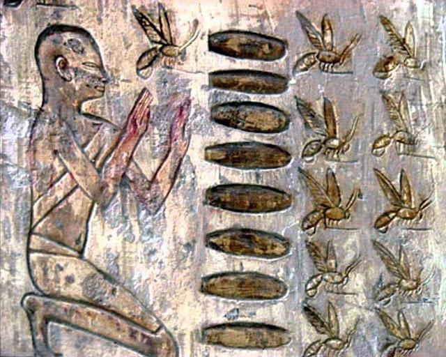Νέα ευρήματα δείχνουν ότι οι άνθρωποι αξιοποιούσαν τις μέλισσες πριν από 9 χιλιάδες έτη