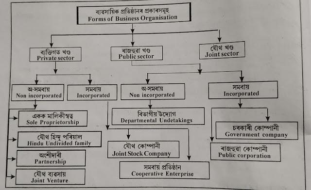 business organization. ব্যৱসায়িক সংগঠন, বাণিজ্য -নৱম শ্ৰেণী