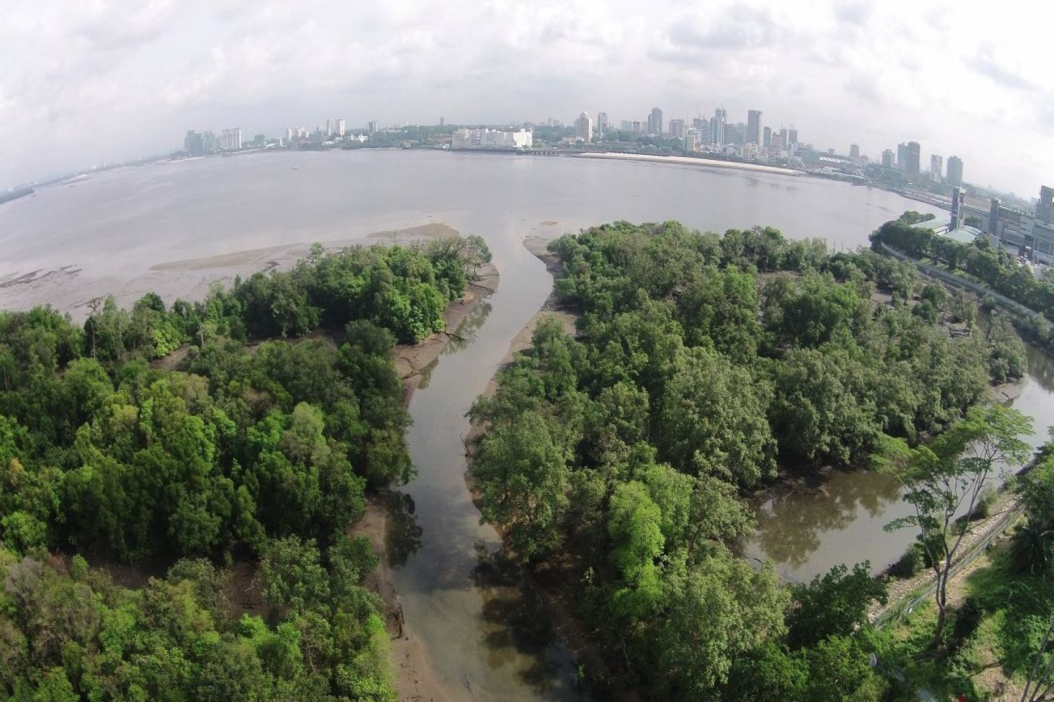 The Mandai Mangrove and Mudflat, opening in 2022, will be Singapore's newest nature park.