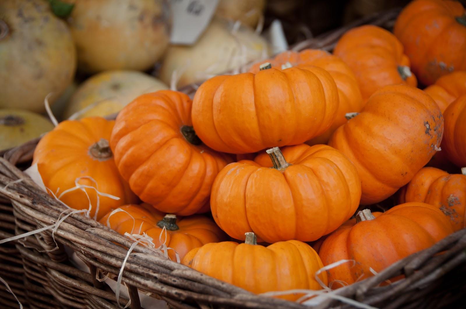 Thermomix Pumpkin Sago Dessert
