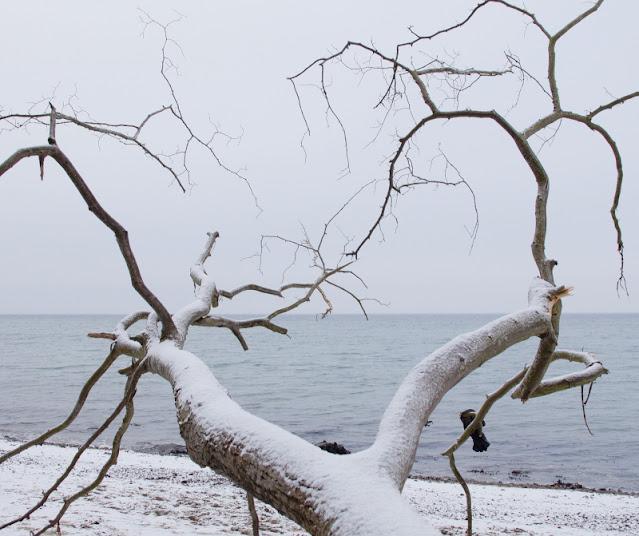 Der Abenteuer-Strand: Rau, steinig, spannend. An so einem Strand findet Ihr spannende Foto-Motive!