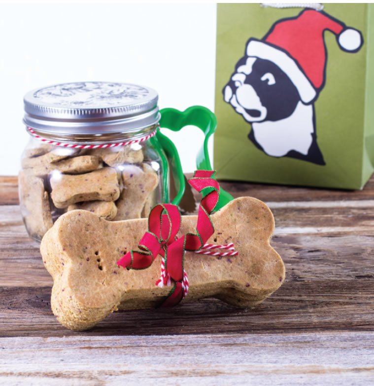 dog biscuits in a jar