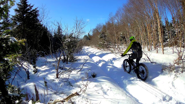 Terrene Cake Eaters 26 x 4.6 riding in snow ruts