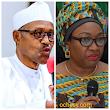 Buhari suspends Oyo-Ita indefinitely