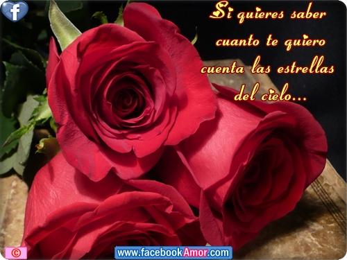 Rosas Rojas Con Frases De Amor: Imagenes De Amor Con Rosas Rojas