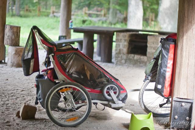 na rowerach po puszczy białowieskiej, podlasie z dziećmi, przyczepka rowerowa