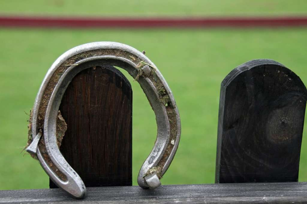 Farrier Schools in Florida and the Southeast