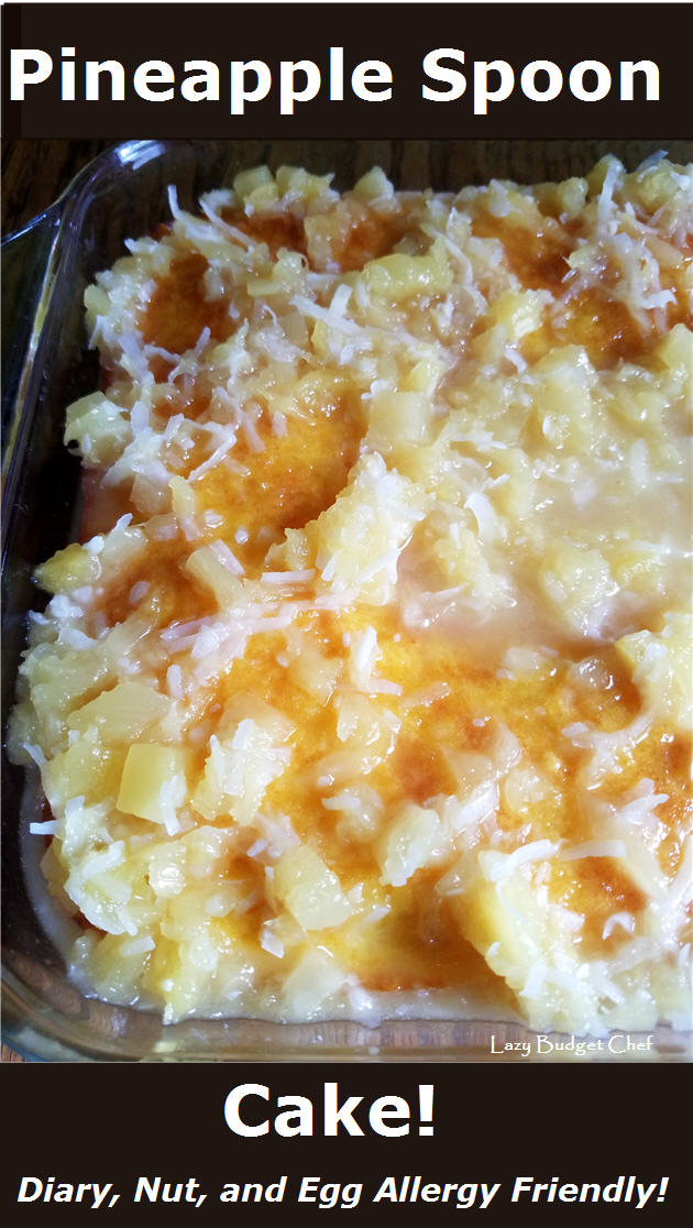 best potluck BBQ cookout party dessert pineapple coconut cake recipe