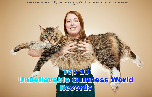 Top 10 Unbelievable Guinness World Record In Hindi