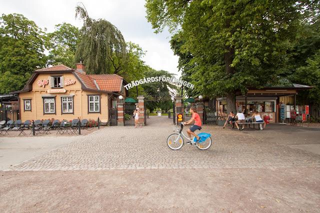 Tradgardsforeningen (parco)-Goteborg