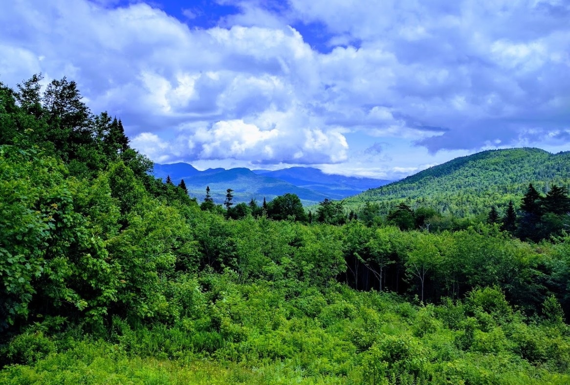 White Mountain National Forest | New Hampshire