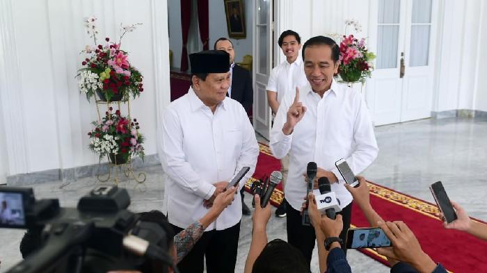 Jokowi Minta Pemerintah Pusat dan Pemerintah Provinsi Bekerjasama Tanggulangi Banjir