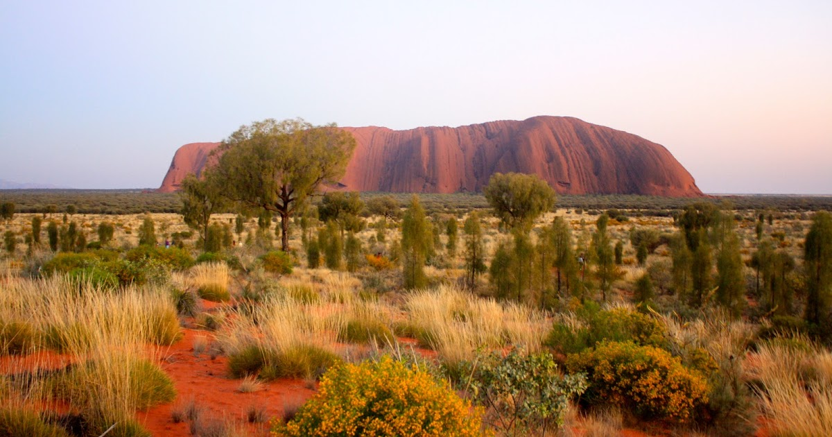 outback - photo #47