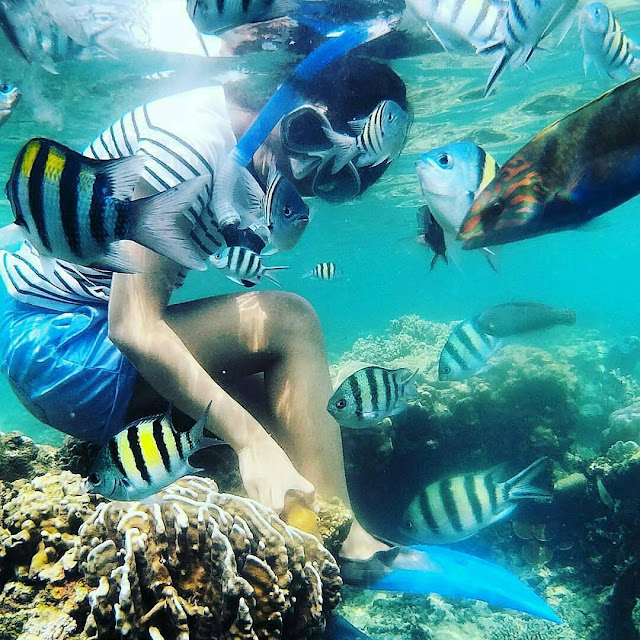 Teluk Kiluan - Tempat Wisata di Lampung