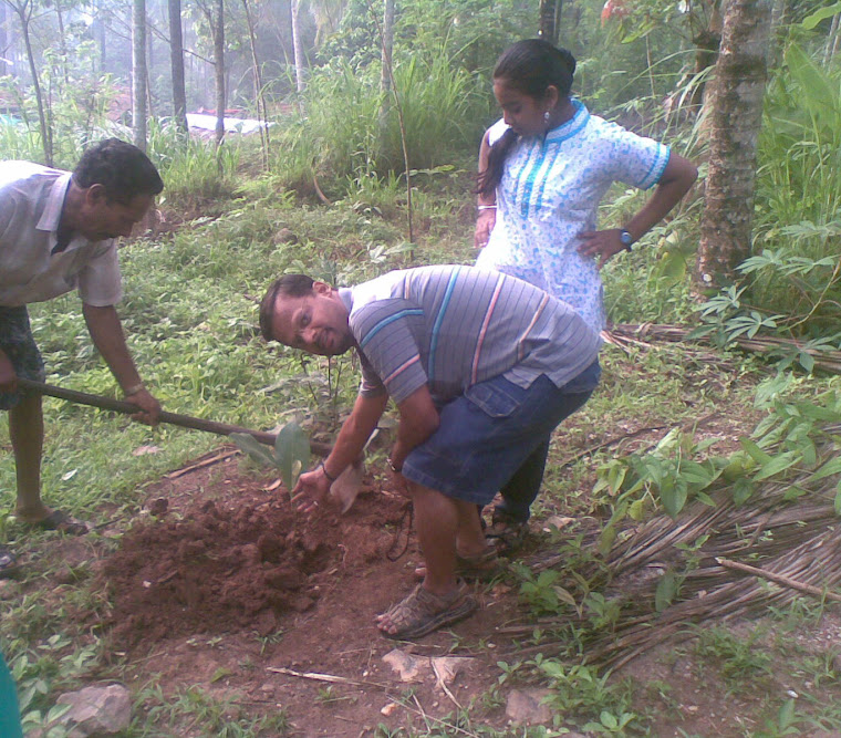 Guest planting trees