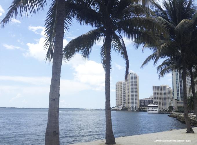 2 Lugares que eu amei conhecer em Miami